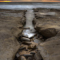 Horseshoes Beach Tidepools by Peter Tellone