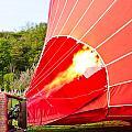 Hot air balloon Print by Tom Gowanlock