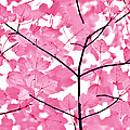 Hot Pink Leaves Melody by Jennie Marie Schell