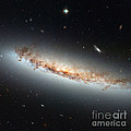 Hubble Views Ngc 4402 by Science Source