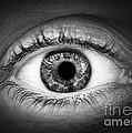 Human eye Print by Elena Elisseeva