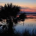 Hunting Isalnd Tidal Marsh by Michael Weeks