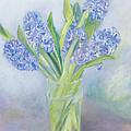 Hyacinths by Sophia Elliot