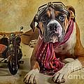 I Want To Ride by Domenico Castaldo