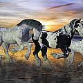 Imagination On The Run by Betsy C Knapp