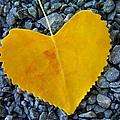 In Love ... by Juergen Weiss
