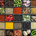 Indian Spice Grid Print by Tim Gainey