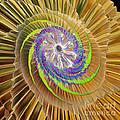 Inner Twister by Deborah Benoit