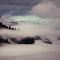 Inside Passage In The Mist by Vicki Jauron