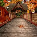 Into the autumn Print by Lourry Legarde