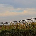 Irrigation On The Farm by Dan Sproul