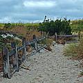 Island Beach 2