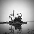 Island by Patrick Downey