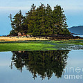 Island Reflection by Robert Bales