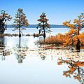 Isle Of Peace - North Carolina by Dan Carmichael
