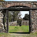 Jack London Ranch Winery Ruins 5d22128 by Wingsdomain Art and Photography