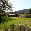 Jack London Stallion Barn 5d22056 by Wingsdomain Art and Photography
