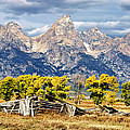 Jackson Hole by Kathleen Bishop