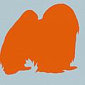 Japanese Chin Orange Print by Naxart Studio