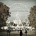 Jardin Des Tuileries Park Paris France Europe  by Jon Boyes