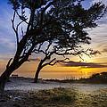 Jekyll Island Sunris...