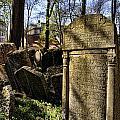 Jewish Cemetery by Brenda Kean
