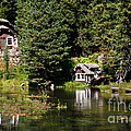 Johnny Sack Cabin by Robert Bales