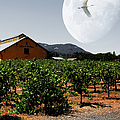 Journey Through The Valley Of The Moon 5d24485 Square by Wingsdomain Art and Photography