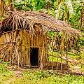 Jungle Hut In A Tropical Rainforest by Colin Utz
