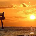 Juno Beach Pier Sunrise Fishing Frenzy