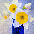 Just Plain Daffy 2 In Blue - Flora - Spring - Daffodil - Narcissus - Jonquil  by Andee Design
