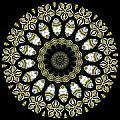 Kaleidoscope Ernst Haeckl Sea Life Series Steampunk Feel Triptyc by Amy Cicconi