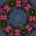 Kaleidoscope Lantana Wreath by Cathy Lindsey