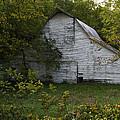 Kansas White Barn by Guy Shultz