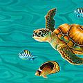 Kauila Sea Turtle by Emily Brantley