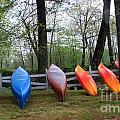 Kayaks Waiting by Michael Mooney