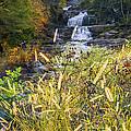 Kent Falls by Bill Wakeley
