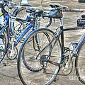 Kestrel And Specialized--ironman Rides by David Bearden