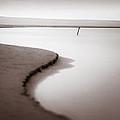 Kijkduin Beach by Dave Bowman