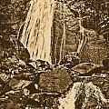 La Coca Falls El Yunque National Rainforest Puerto Rico Prints Rustic by Shawn O'Brien