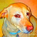Labrador Painting Print by Iain McDonald