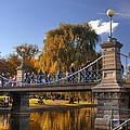 Lagoon Bridge In Autumn by Joann Vitali