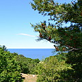 Lake Michigan From The Top Of The Dune by Michelle Calkins