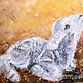Lamb  by Amanda Dinan