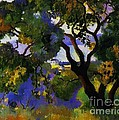 Landscape At St Tropez  2 by Pg Reproductions