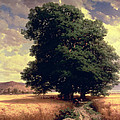 Landscape with Oaks Print by Alexandre Calame