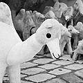 Large Soft Toy Stuffed Camel Souvenir At Market Stall In Nabeul Tunisia by Joe Fox