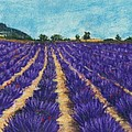 Lavender Afternoon by Anastasiya Malakhova