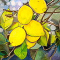 Lemons by Debi Starr