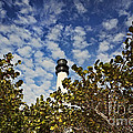 Lighthouse At Bill Baggs Florida State Park by Eyzen Medina